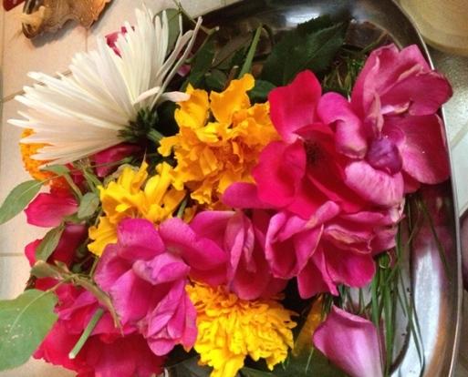 flowers-garike